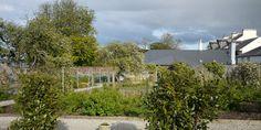 Donegal Garden Trail