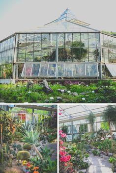 Daegu Arboretum South Korea Nature Green House Plants  Travel / Photography Tamron  / Nikon