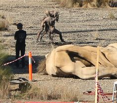 Hell on earth: The sensational pictures were snapped in the New South Wales capital on Thu...