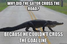 Beat those Gators!!!!!