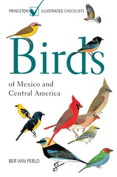 birds of mexico - Google Search