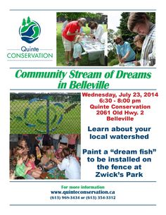 Community Stream of Dreams poster