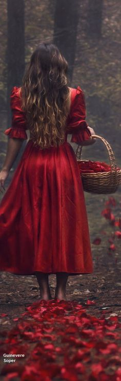 DesertRose,;,Trail of Red by the courtesy of Parvana Photography,;,