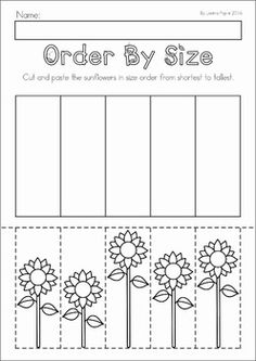 Autumn / Fall Preschool No Prep Worksheets & Activities. Order by size: shortest to tallest sunflower.
