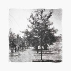 'Urban Collection - Row of Trees in Town.' Scarf by