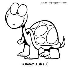Dz Turtle Coloring Page 3 Pinterest Cartoon Turtle Turtle Turtles Color Pages