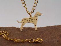 Dalmation 1 - hund Nr.43