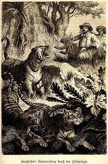 Franz Wilhelm Junghuhn Wikipedia Bahasa Indonesia