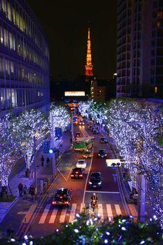 2014年 六本木ヒルズ ケアキ坂 青いイルミネーション roppongi hills keyakizaka (25)
