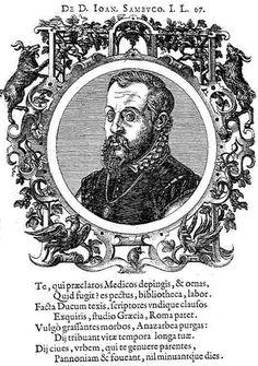 Sambucus _Ioannes_autoritratto.JPG (429×610)