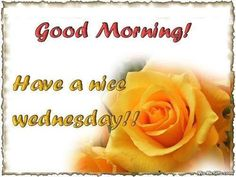 Wednesday Facebook Graphic - Animaatjes wednesday 516014