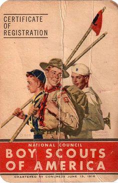 certificado de registro Vintage Scouts