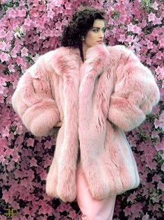 powerfurs:    Pink fox