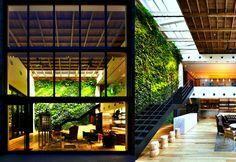 Lush Interior Vertical Garden at the Yoyogi Village in Tokyo