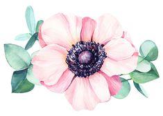 Floral Flowers, Flower Art, Watercolor Flowers, Watercolor Paintings, Galaxy S8 Wallpaper, Flower Png Images, Peacock Art, Bird Drawings, Fabric Painting