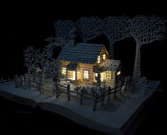 House In A Field Book Art