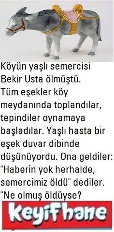 Köyün Semercisi  #Fıkra #KöyünSemercisi #Eşek #Bekirusta Haha, Ha Ha