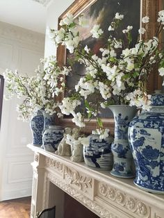 Are you a member of The blue and white club? - Enchanted BlogEnchanted Blog