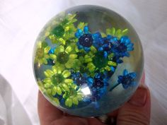 Lucite paper weight, dried flowers.