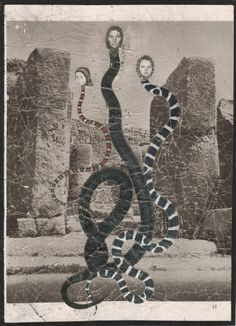 "annalynnhammond: "" Descendants of Eve Paper collage by Annalynn Hammond """