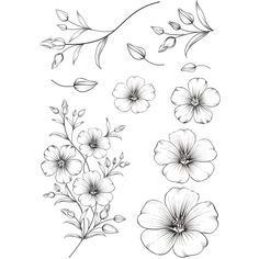 Flowers Transparent Clear Stamps for DIY Scrapbooking/Card Making/Kids Christmas Fun Decoration Supplies Tatoo Floral, Floral Tattoo Design, Flower Tattoo Designs, Flower Tattoos, Flower Drawing Tutorials, Flower Sketches, Botanical Line Drawing, Floral Drawing, Tattoo Drawings