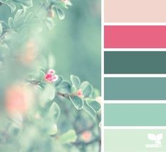 Beautiful aqua and hot pink color combo for bathroom or bedroom. Dreamy and romantic!