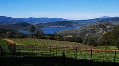 Chappellet Vineyards, Napa CA