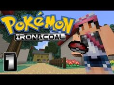 STOP SCROLLING! if you love pixelmon I would watch this series!