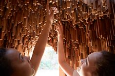 10,000 tree samples spanning millions of years form 'modernist grotto' in bristol