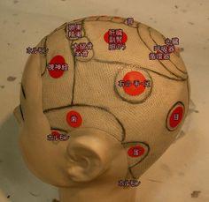 頭のツボ2