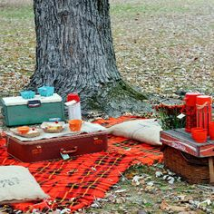 Host the Ultimate Fall Picnic This Weekend