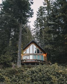 The ultimate cabin in the woods
