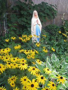 A Garden Statue Of Mary Nestled In A Bed Of Black Eyed Susanu0027s And