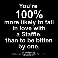 You're 100% more likely to fall in love with a #Staffie, than to be bitten by one