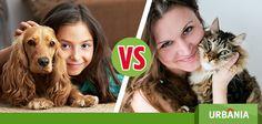 ¿Un perrito o un gatito? ¿Cuál escogerías como mascota? #UrbaniaVS