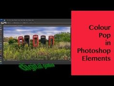 Learn Photoshop Elements - Make a Colour Pop