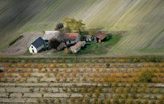 Az Alföld egyedülálló településformája a tanyavilág. Az égből nézve fantasztikus látványt nyújtanak a még üzemelő, gondozott porták és a már megroskadt, elhagyott házak.