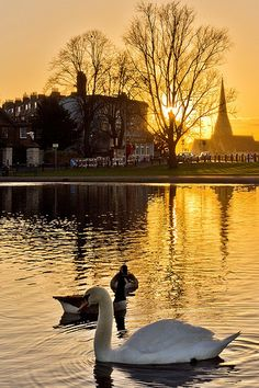 Blackheath (An inner suburban area of southeast London, England. It is named from the large open public grassland which separates it from Greenwich to the north and Lewisham to the west.) Sunset in London! *