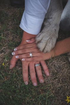 Adorable dog + bride and groom photo idea {Tabby Miller Photography}