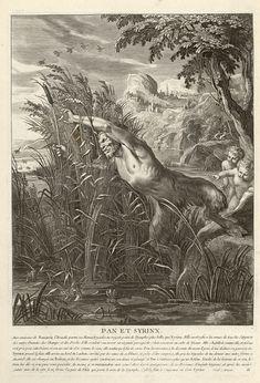 """Bibliothèque de Valenciennes, """"Pan et Syrinx"""", Les Métamorphoses d'Ovide, éd. 1806"""