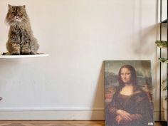 Mona Lisa art cat scratcher modern cat scratcher Dog Care Tips, Pet Care, Pet Tips, Outdoor Cat Enclosure, Cat Water Fountain, Pumpkin Dog Treats, Cat Towers, Cat Scratching Post, Cat Scratcher