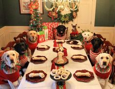 I want to be invited to this holiday dinner! #dogs #doglovers #HappyHolidays