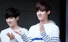 Wonwoo & Mingyu pt.4 #gwiyomi