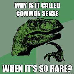 Philosoraptor...Common Sense