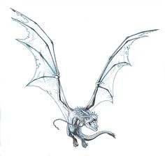 DRAGON WINGSPAN by Jerome-K-Moore Harry Potter Tattoos, Harry Potter Drawings, Animal Sketches, Art Sketches, Art Drawings, Fantasy Drawings, Small Dragon Tattoos, Dragon Tattoo Designs, Fantasy Dragon
