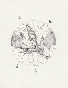 Peter Carrington - Ilustrador