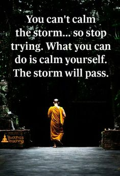 You can't calm the storm...so stop trying. What you can do is calm yourself. The storm will pass