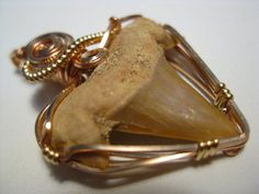 Fossil Sharks Tooth Pendant in 14k Rose Gold Filled Wire  The benefit of wrapping fossil sharks teeth this way as opposed to wrapping the wire