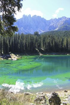 Beautiful Alpine Lak
