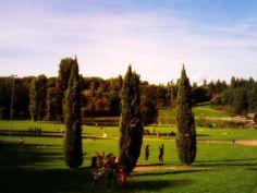 Pomeriggio d'estate al Parco Lago Nord (Paderno Dugnano). #estate #parco #summer #park